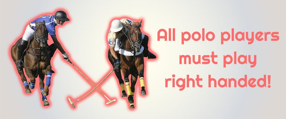 Sports facts about polo